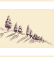 trees growing on a hill slope sketch vector image vector image