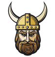 viking head vector image vector image