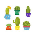 collection cute cactus and succulent plants in vector image vector image