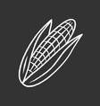 corn chalk icon vector image vector image