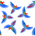 Macaw parrot seamless pattern vector image vector image