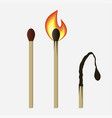 match set - unused burning and burned matchsticks vector image