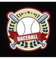 sport Baseballs vector image