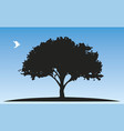 tree silhouette and a white pigeon vector image vector image