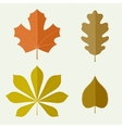 Autumn leaves in flat style vector image