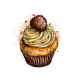 cupcake with cream from a splash watercolor vector image