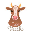 cute cow portrait cow milk inscription calf vector image