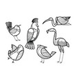 cute hand drawn birds set coloring page vector image vector image