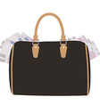 Handbag with money vector image