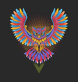 owl colorful ornamental vector image