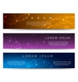 Polygonal spheres banners vector image vector image