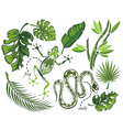 Set of tropical leaves and reptiles