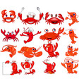 cartoon shrimp and crab collection set vector image vector image