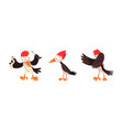 cute woodpecker bird set woodland bright vector image vector image
