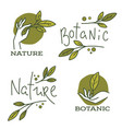 doodle organic leaves hand and lettering vector image vector image