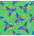Macaw parrot seamless pattern vector image