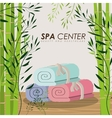 spa center design vector image
