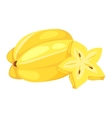 Bunch of tropical bananas vector image