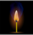 burning match with fire flame vector image vector image