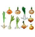 Green leek and bulb onion vegetables