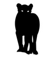 lion silhouette icon eps vector image vector image