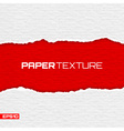 Realistic lacerated paper texture vector image