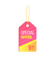 special offer colorful trinket vector image
