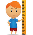cartoon man with ruler straightedge vector image vector image