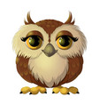 cute brown owl vector image