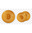 golden bitcoins in set vector image