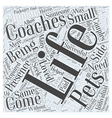Life Coaches Come in Small Packages Word Cloud vector image vector image
