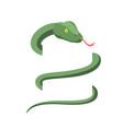 snake wraps isolated cobra on white background vector image