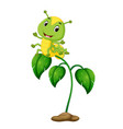 a green plant with happy caterpillars vector image vector image