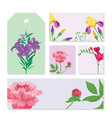 Cartoon petal vintage floral bouquet garden vector image