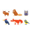 collection of wild forest animals boar beaver vector image vector image
