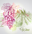 Hand drawn wine background vector image vector image