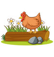 isolated picture chicken on log vector image vector image