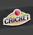 logo for cricket sport vector image