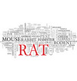rat word cloud concept vector image vector image