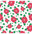 red green poinsettia flower and holly vector image vector image