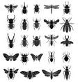 set of insects on white background design vector image