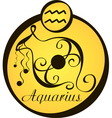 stylized zodiac signs in a yellow circle aquarius vector image