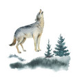 watercolor christmas card with wolf vector image vector image