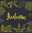 Autumn lettering hand drawn leaves around