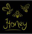 bee yellow on a black background vector image vector image
