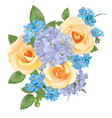 bouquet of roses blue forget me not and phloxes vector image