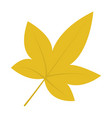 chestnut leaf icon flat style vector image