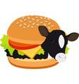 cow burger of beef burger cow inside a hamburger vector image vector image