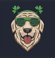 dog head eyeglasses st patricks day vector image