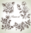 Floral set hand drawn of roses vector | Price: 1 Credit (USD $1)